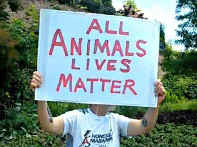 All-animal-lives-matter-sign-640x480