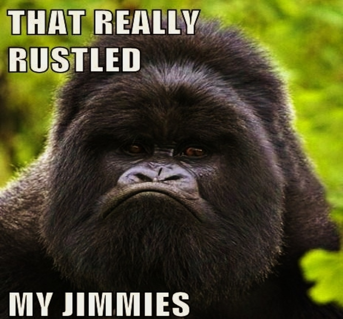 gorilla-that-really-rustled-my-jimmies-meme